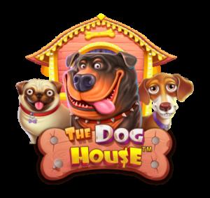 nouveaux joueurs - dog house - best4bonus